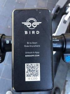 bird e scooter kaufen und mieten